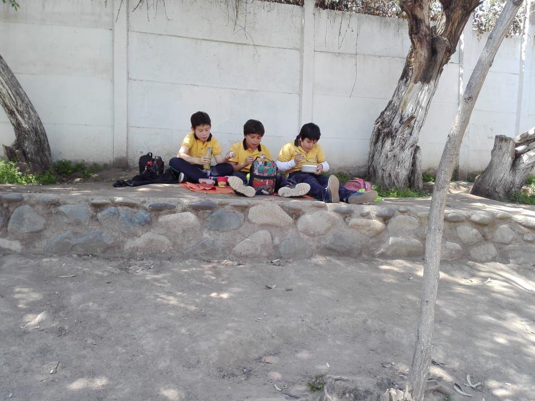 Un picnic en el patio