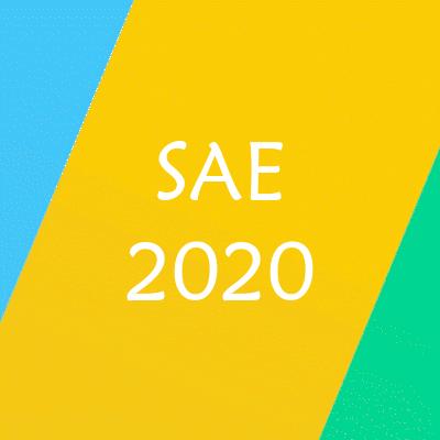 Información SAE 2020